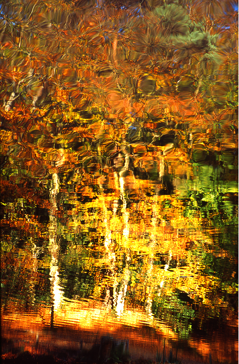 Autumnal Reflection - Peter Karry